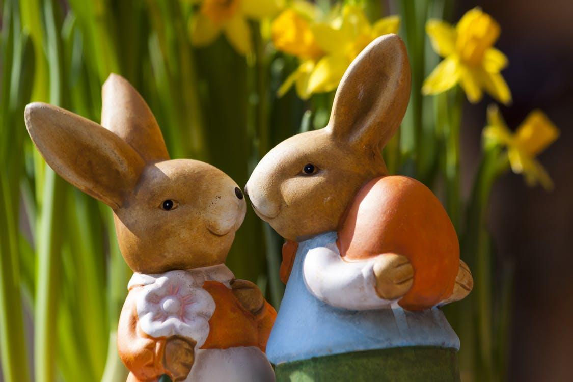 Easter savings with Zeek